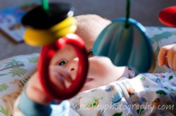 color photography color infant photography infant photography